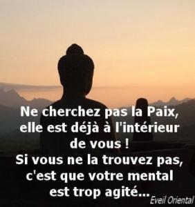 CHERCHER LA PAIX-282x300