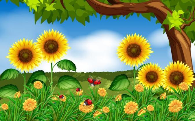 Cocinelles-et-fleurs-dans-un-jardin.jpg