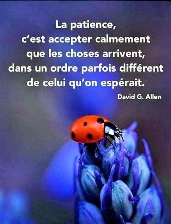 LA PATIENCE C'EST ACCEPTER CALMEMENT QUE LES CHOSES ARIVENT...DANS UN ORDRE DIFFERRENT (2)